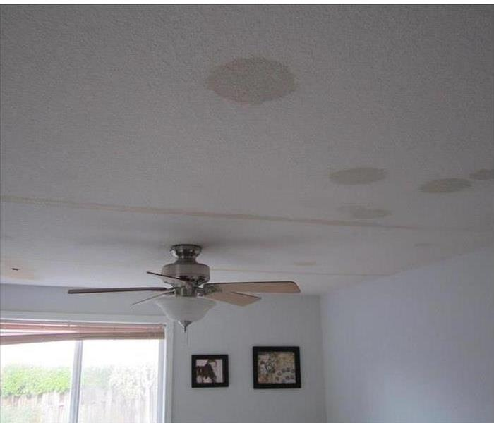 Water Damage Here are some common causes of water damage and how you can spot the warning signs.