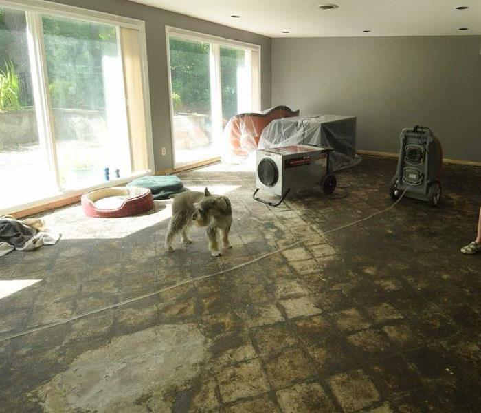 Inside a house house that has a sewer backup. The sewer is all over the floor and contents.