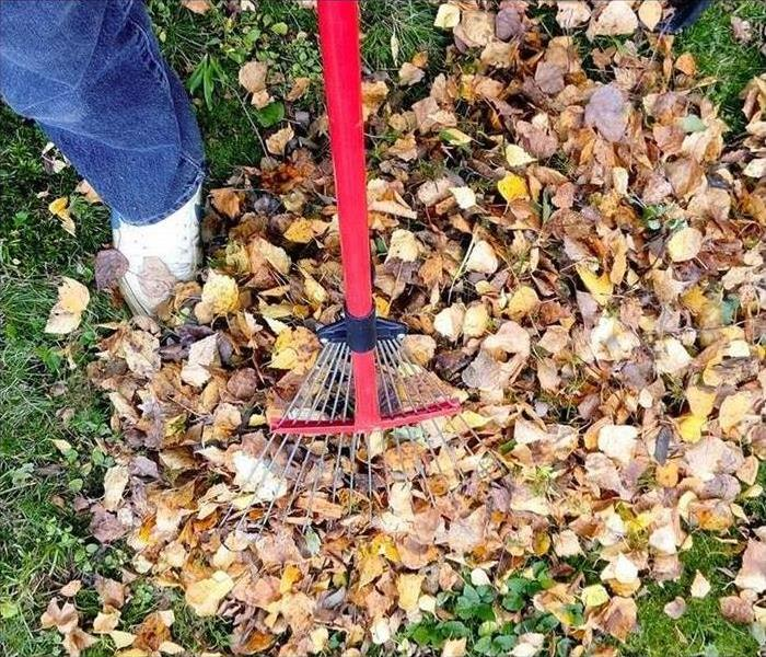 A rake in a pile of leaves.
