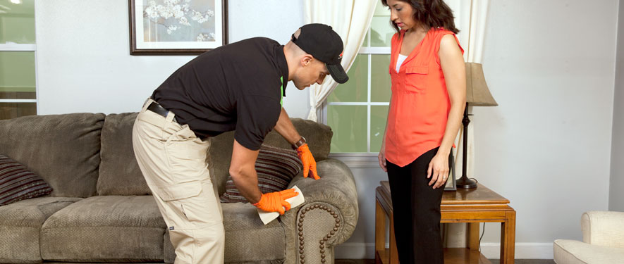 Decatur, IL carpet upholstery cleaning
